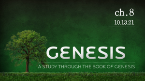 October 20th: Message - Genesis 8 verse-by-verse study